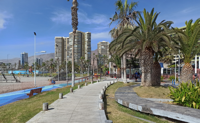 A wooden boardwalk curves along a grassy area lining the beach with palm trees and tall apartment buildings in the background