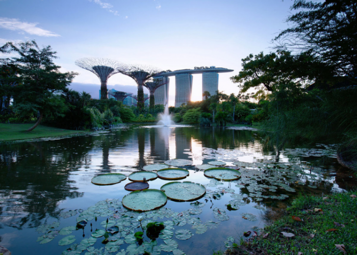 Tall towers that appear to be flowers rise behind a large pong with lilypads